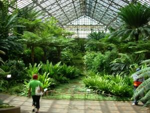 1 Kilbourn Park Greenhouse