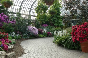 7 garfield-park-conservatory-conservatory-path