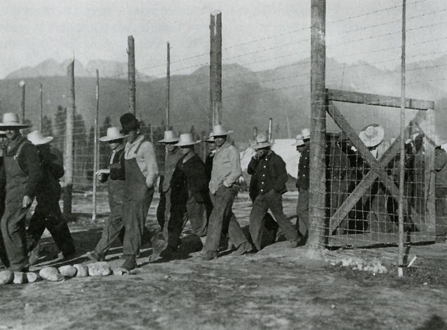 the internment of ukraine during the first world war