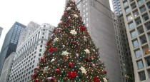 1-chicago-christmas-tree