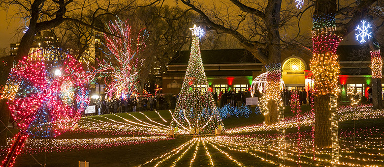 12/20/15 8:43:30 PM -- Chicago, IL, USA Lincoln Park Zoo Lights © Todd Rosenberg Photography 2015