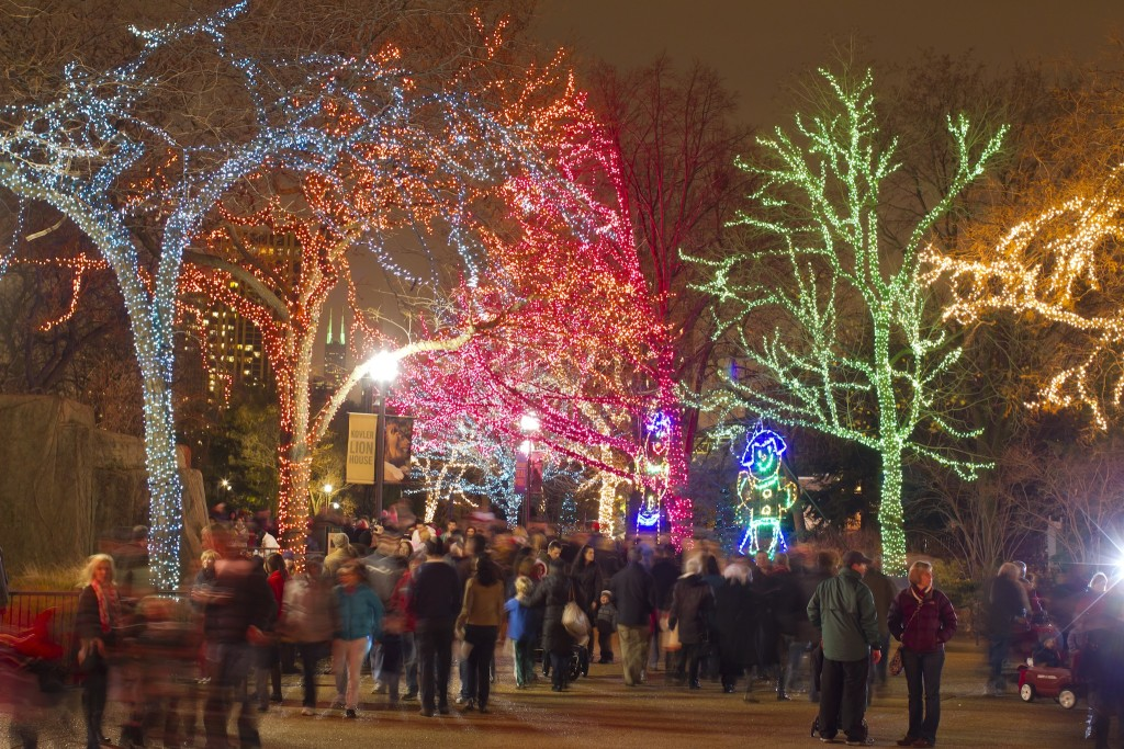 11/25/11 6:09:14 PM -- Lincoln Park Zoo Presents Zoo Lights . © Todd Rosenberg Photography 2011
