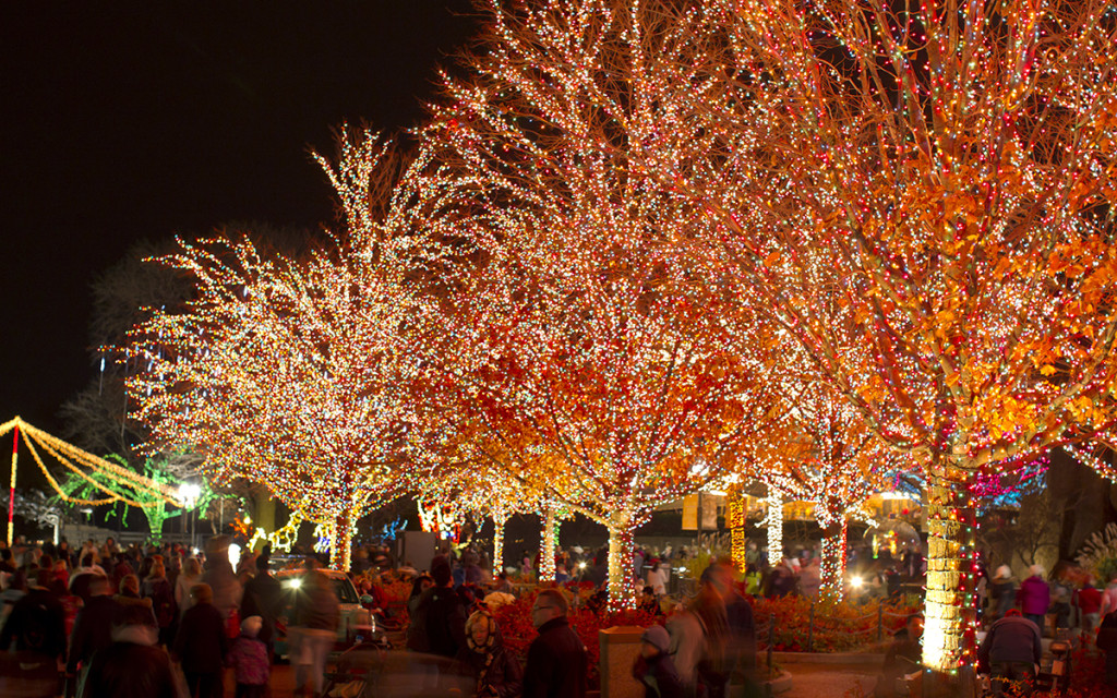 11/25/11 6:10:47 PM -- Lincoln Park Zoo Presents Zoo Lights . © Todd Rosenberg Photography 2011