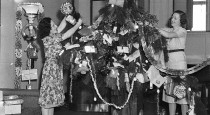 Christmas_tree_in_studio,_24-12-1937_-_by_Sam_Hood_(3081802736)