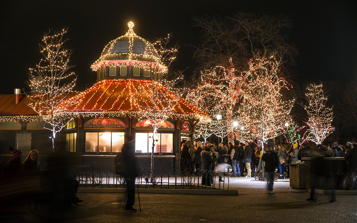 12/20/15 6:41:47 PM -- Chicago, IL, USA Lincoln Park Zoo Lights © Todd Rosenberg Photography 2015